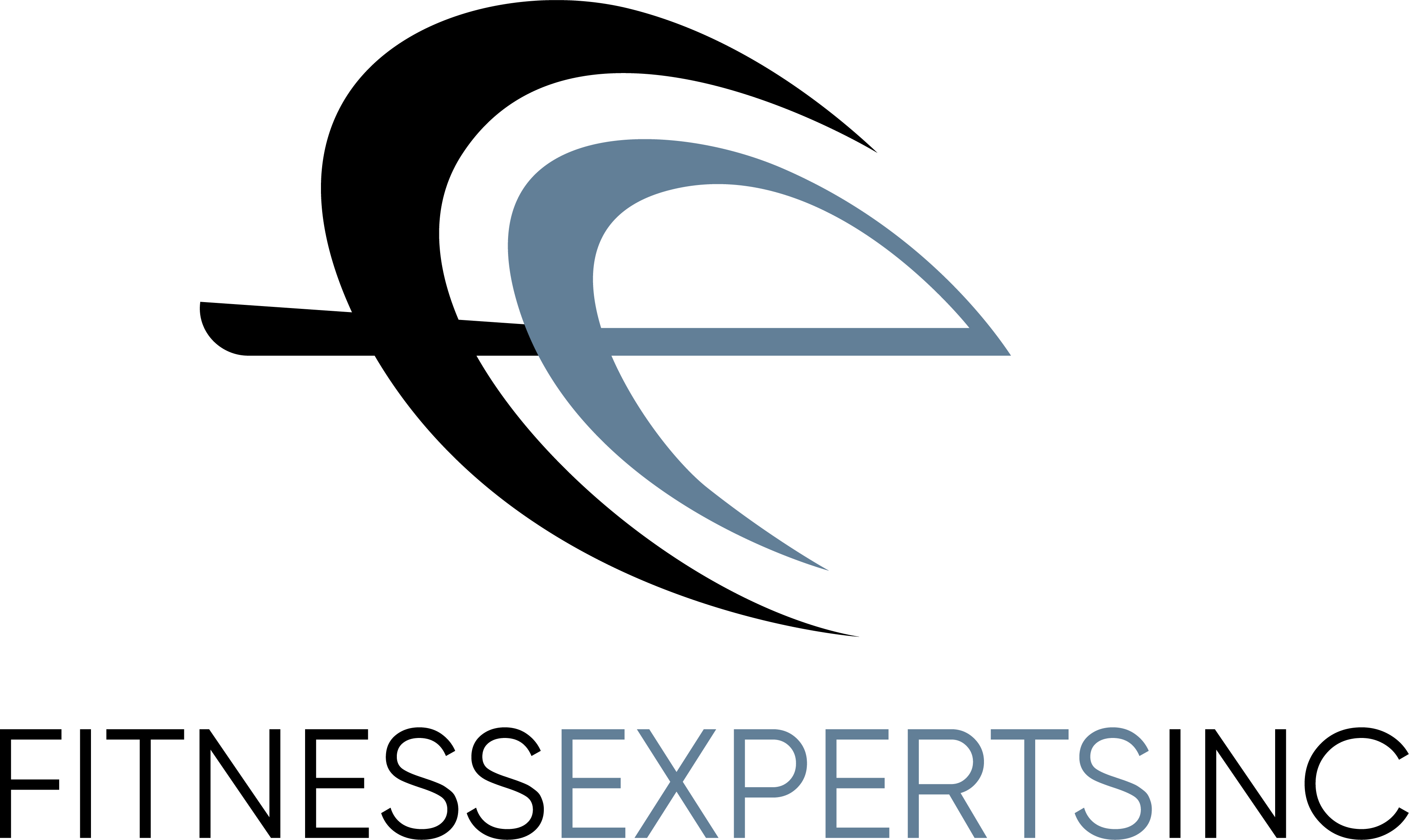 Fitness Experts Inc.